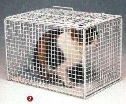 Katzenkäfig